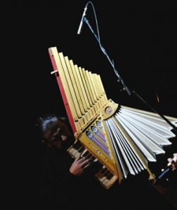 Fisarmonica di Leonardo