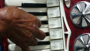 Festa Internazionale della Fisarmonica